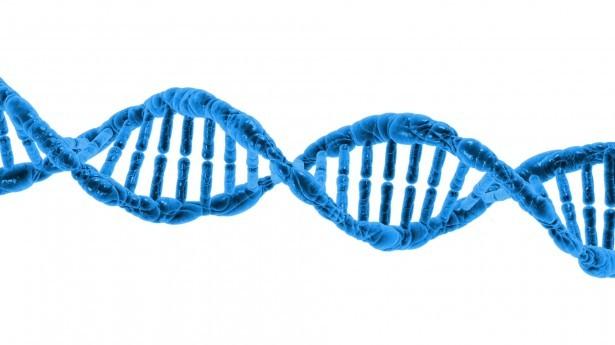 genetic testing Perth